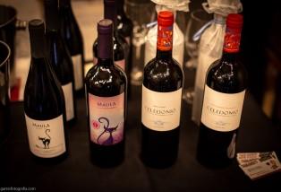 Expo Vino Boutique-11