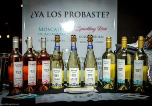 Expo Vino Boutique-42